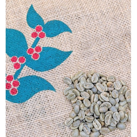 Colombia Supremo 18 green coffee beans