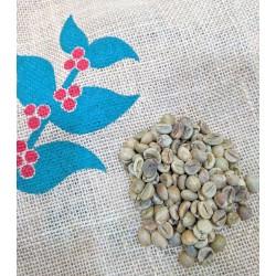 Vietnam Robusta Natural green coffee beans (2kg)